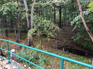 Město nechá zrevitalizovat park ve Fibichově ulici. Vzniknou i tůně