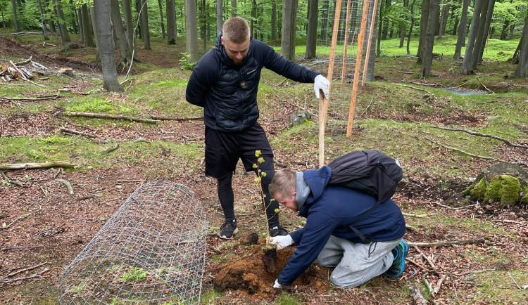 Milujeme Jizerky. Dva kluci z Jablonce se pustili do sázení stromů, chtějí zachovat hory dalším generacím