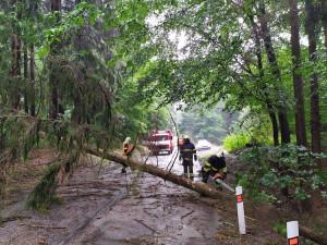 Bouřky se prohnaly Libereckým krajem. Popadané stromy zablokovaly silnice i koleje