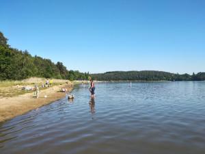 Sinice po přívalových deštích zhoršily kvalitu vody v Hamerském jezeře