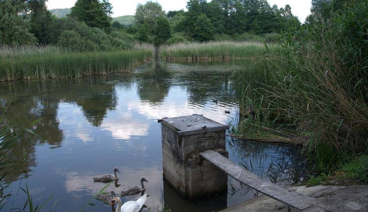 Deště poškodily hráz Kachního rybníka. Po vyhlášení pohotovosti byl preventivně vypuštěn