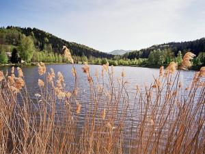 Krásné roubenky, málo turistů a klid. Objevte okolí rybníku Petr v Jizerkách