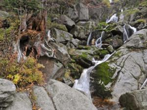TIP NA VÝLET: Do Jizerskohorských bučin vlakem za výhledy i vodopádem