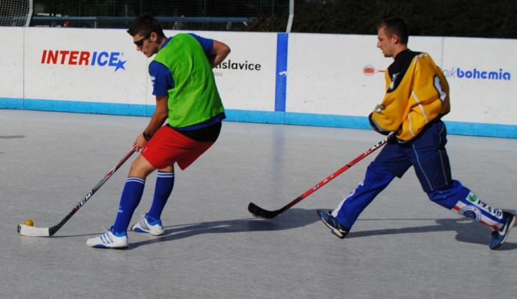 Turnaj v malém hokejbalu vyhrály Vosy