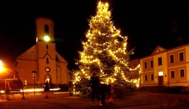Vánoční stromy na Liberecku
