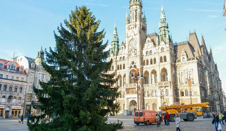 Vánoční strom už stojí na náměstí
