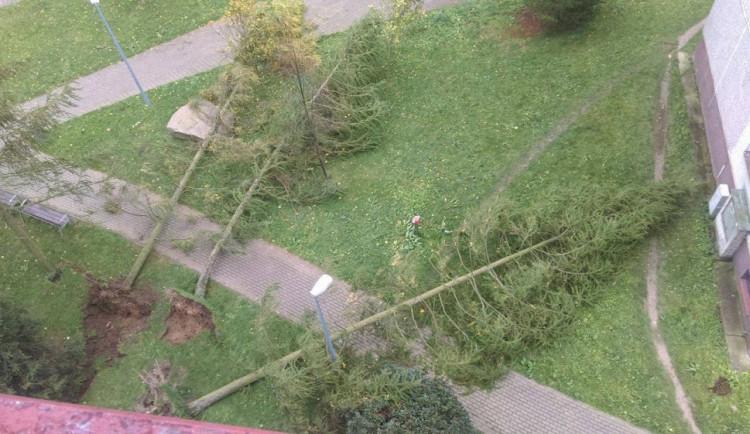 Silný vítr komplikoval život na Liberecku