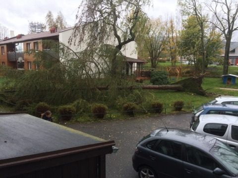 Silný vítr komplikuje život na Liberecku.