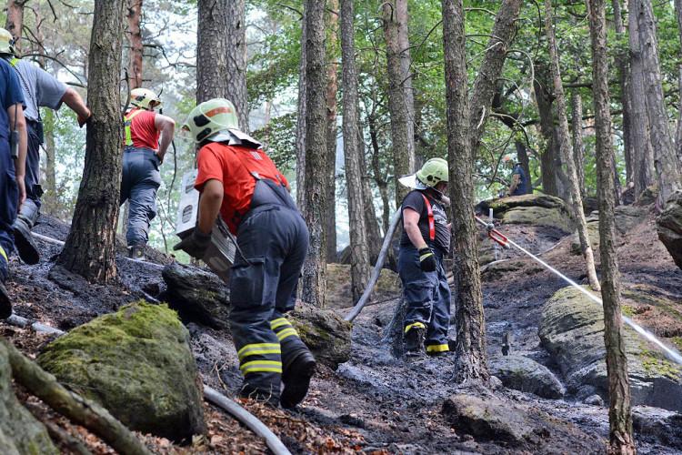 Požár lesa u obce Korce na Českolipsku
