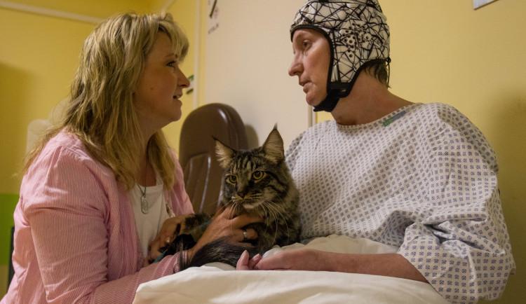 V liberecké nemocnici zlepšují pacientům náladu i zvířecí terapeuti